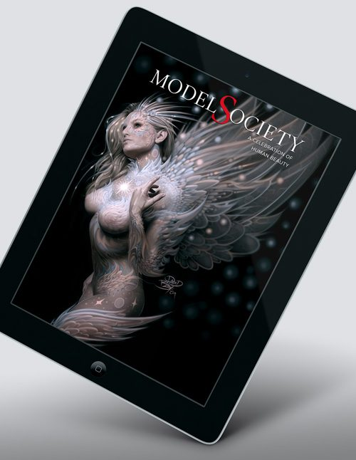 MS4-iPad-2-air-mockup-500x646